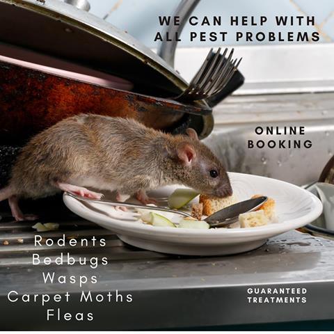 Rodent control Cambridgeshire